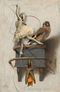 Der Gimpel, der Schläger und die Ballerina