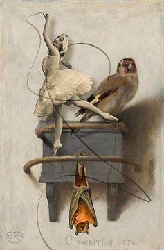 Het puttertje, de vleermuis en de ballerina van Nop Briex