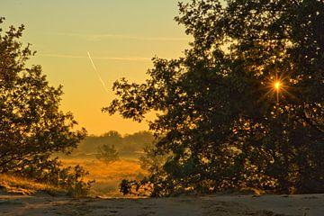 Romantic landscape van Edzo Boven