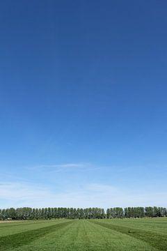 Landschap van Wouter Bos