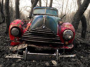 Oldtimer in het bos