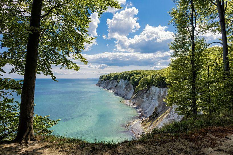 Chalk cliffs on the Baltic Sea coast van Rico Ködder