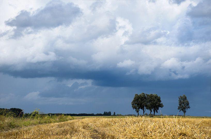 Toscane of Hoekschewaard van Jan Brand