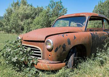 Vergane roestige vintage auto tussen de struiken. van André Dijkshoorn