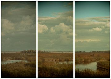 lauwersmeer triptychon 2 von anne droogsma