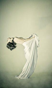 Mucha's Dance von Nanouk el Gamal - Wijchers (Photonook)