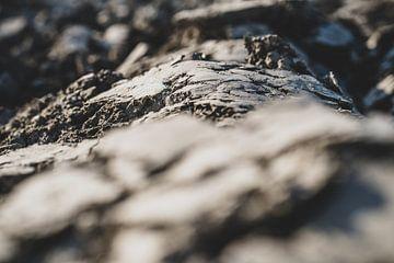 Gepflügter Lehm auf dem Land von Fotografiecor .nl