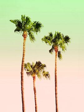PASTEL PALM TREES van Pia Schneider