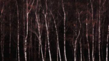bos berken van