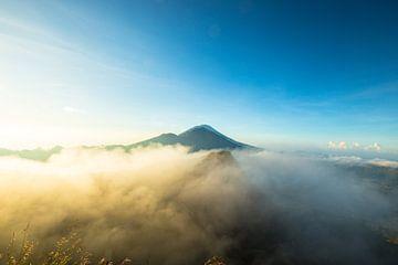 Bali von Oscar Limahelu