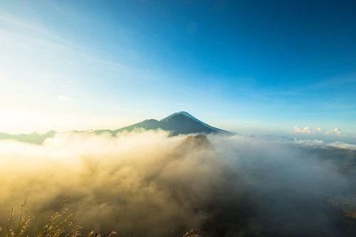 Bali  van