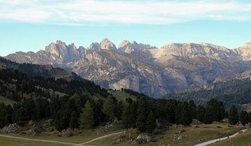 Passo Sella (dolomites) von Nico Olsthoorn