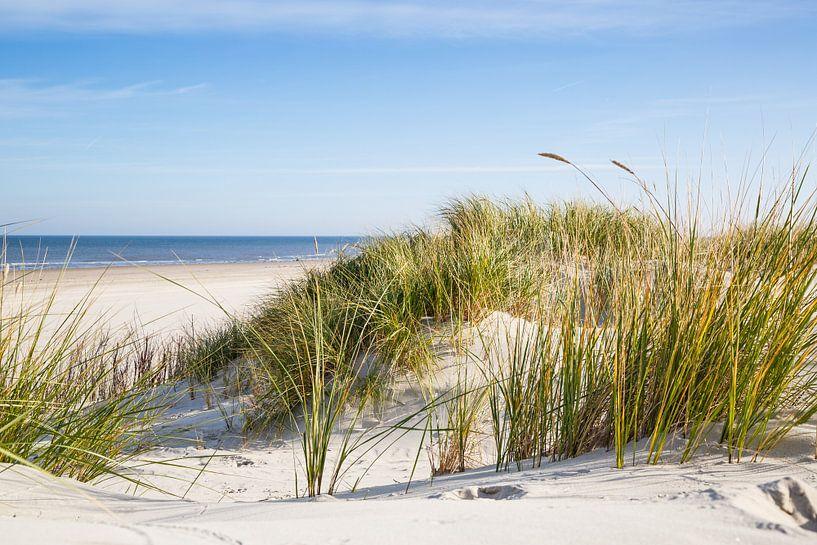 Nordsee Düne mit Meerblick von Ursula Reins
