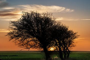 Zonsondergang aan het IJsselmeer von Harrie Muis