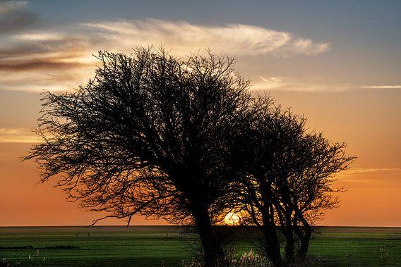 Zonsondergang aan het IJsselmeer