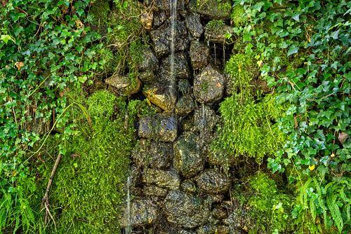 Wasser an moosbewachsener Natursteinmauer
