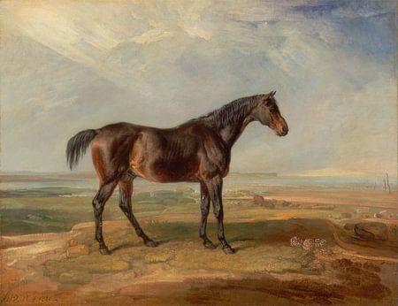 Dr. Syntax, een Bay Race paard, staand in een kustlandschap, een estuarium voorbij, James Ward. van Meesterlijcke Meesters