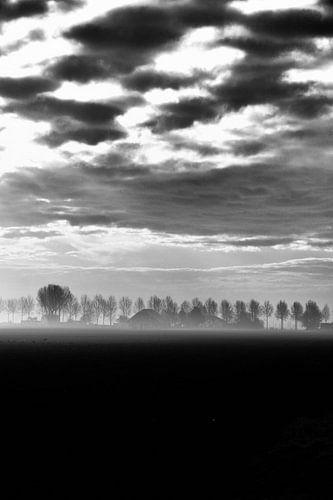 Nieuw vennep, Ochtend mist zwart wit