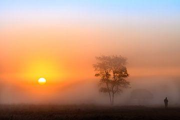 Kleurrijke zonsopkomst op een mistige ochtend van Wendy van Kuler