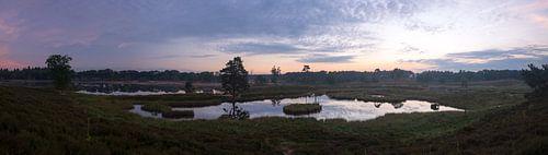 panorama van de overasselse vennen bij zonsopkomst