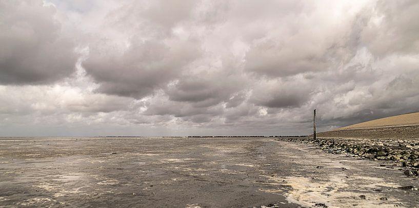 Friese kust van Harry Stok