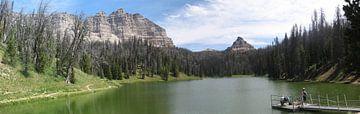 Meertje in de Rocky Mountains von Toon Loonen