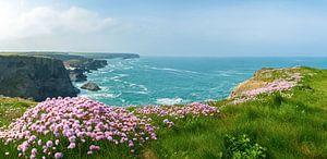 Cornish coast van