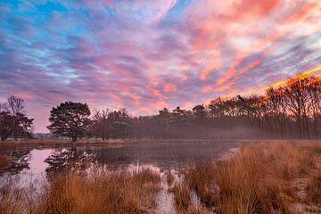 Kleurige zonsopkomst boven nevelig ven van Karla Leeftink