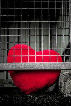 Liefde - gevangengenomen van Norbert Sülzner