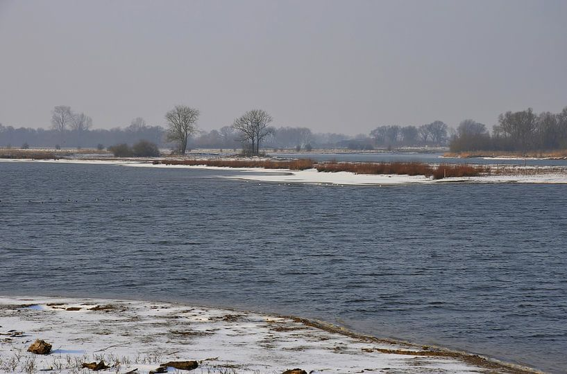 Winter in de uiterwaarden van Frans Blok