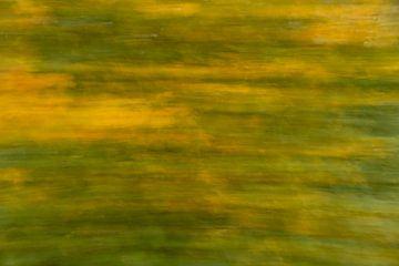 Beweging in het bos ICM van Dokra Fotografie