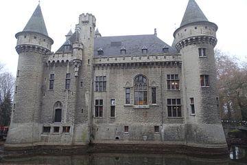 zeer mooi kasteel van David Van der Cruyssen