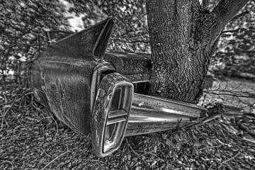 Bäume und Autos, eine lange Geschichte von Jos Hug
