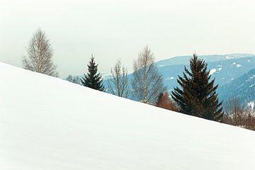 Schneelandschaft in Österreich von Evert Jan Luchies