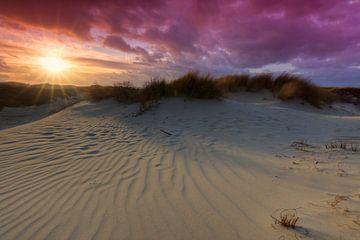 Zonsondergang in de duinen van het Westduinpark nabij Kijkduin