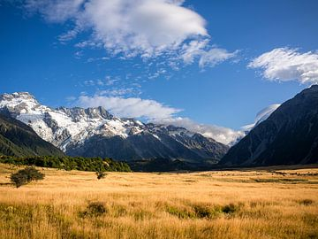 Nieuw-Zeeland - Mount Cook / Aoraki National Park - Typisch landschap van Nieuw-Zeeland van Rik Pijnenburg