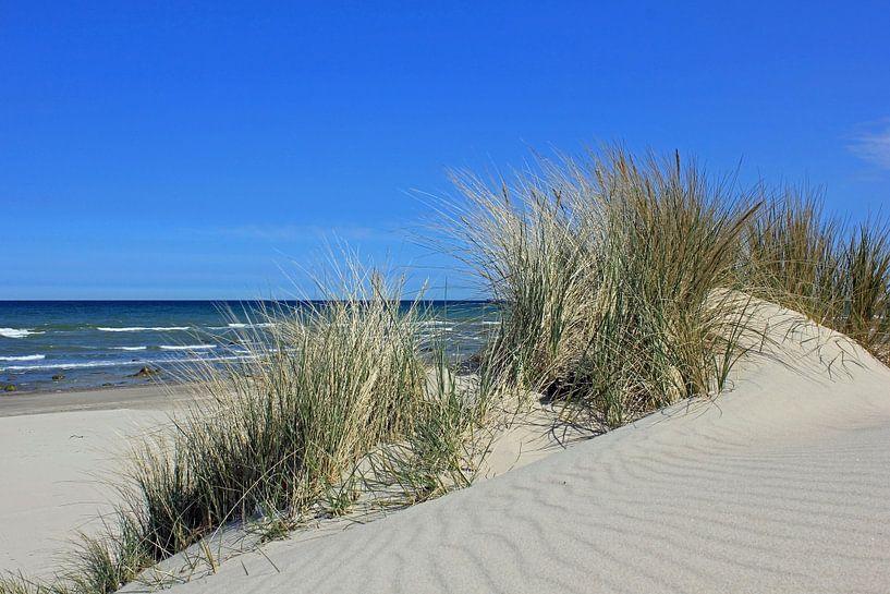 Sandwellen im Mai von Ostsee Bilder