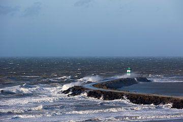 November Storm I van Sander van der Borch