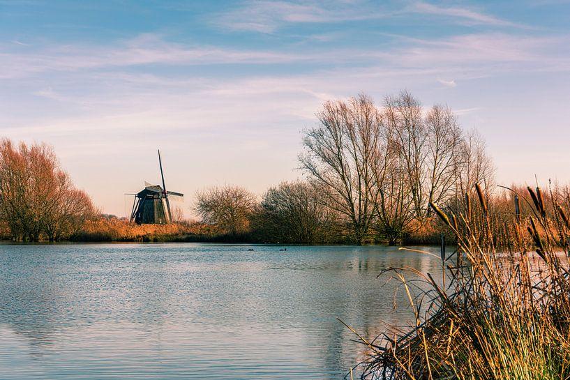 Hollandse molen aan het water van Erna Böhre