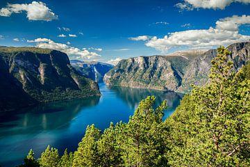 Noorwegen, Aurlands Fjord van Sascha Kilmer