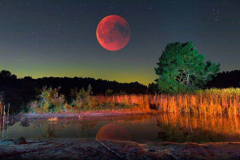 Rode maan over heide landschap van Jack van der Spoel