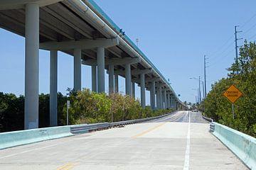 Crocodile Crossing - U.S. Highway 1 zwischen Miami und Key West von t.ART