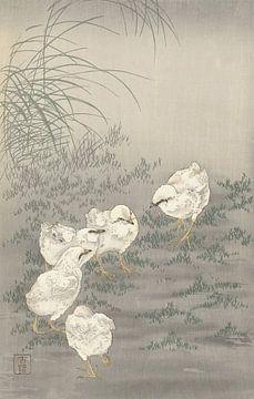 Fünf Küken von Ohara Koson
