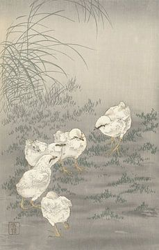 Vijf kuikens van Ohara Koson