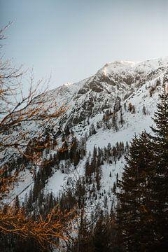 Achensee   Winter in de Alpen van Nanda van der Eijk