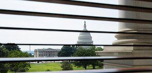 Capitol Through Shades