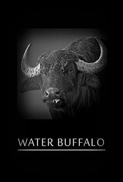 Water bufallo van Leopold Brix