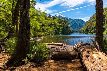 Chili - Lago Toro von Jack Koning