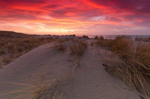 Prachtige zonsondergang in de duinen bij Kijkduin van