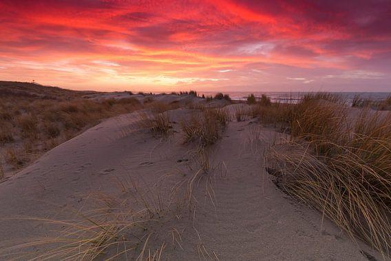 Prachtige zonsondergang in de duinen bij Kijkduin